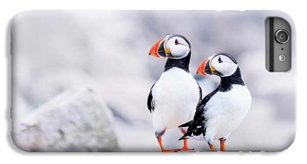 Birdland IPhone 6 Plus Case by Evelina Kremsdorf
