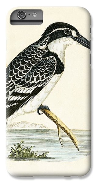 Black And White Kingfisher IPhone 6 Plus Case by English School