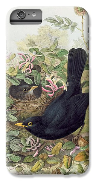 Blackbird,  IPhone 6 Plus Case by John Gould