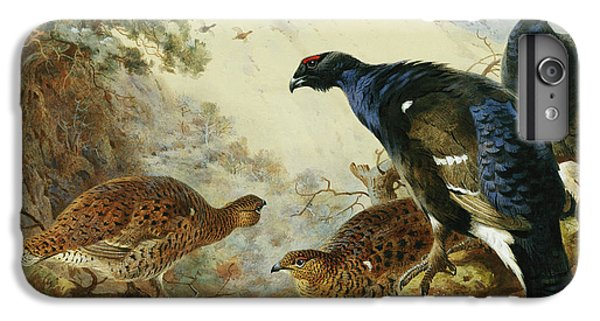 Blackgame Or Black Grouse IPhone 6 Plus Case by Archibald Thorburn
