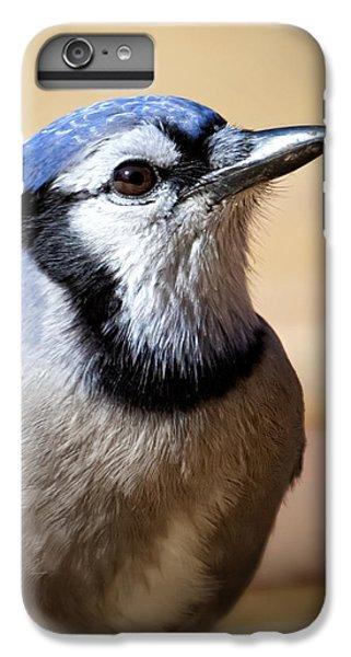 Blue Jay Portrait IPhone 6 Plus Case by Al  Mueller