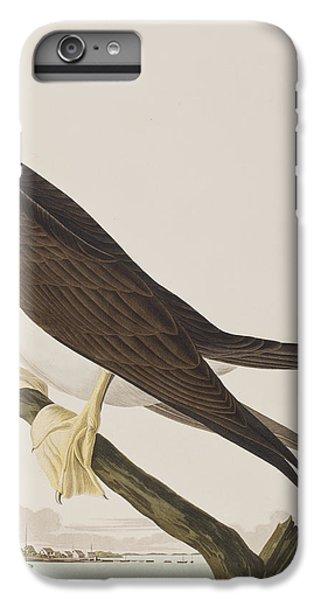 Booby Gannet   IPhone 6 Plus Case by John James Audubon