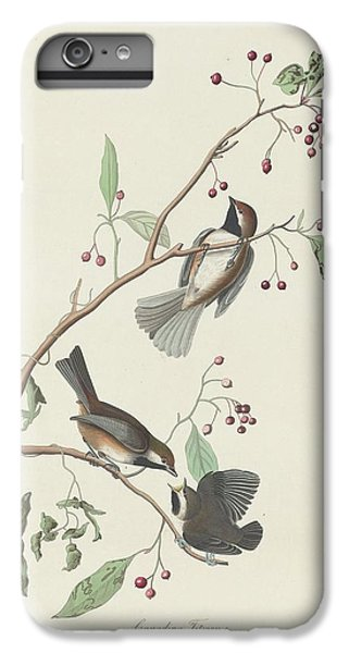 Canadian Titmouse IPhone 6 Plus Case by John James Audubon