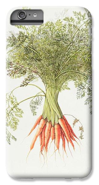 Carrots IPhone 6 Plus Case by Margaret Ann Eden