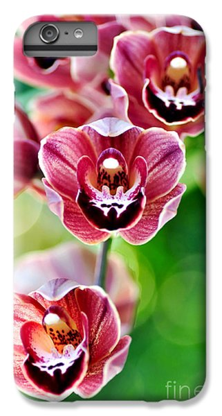 Cascading Miniature Orchids IPhone 6 Plus Case by Kaye Menner