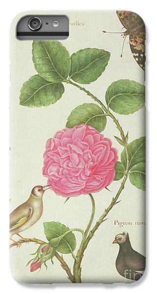 Centifolia Rose, Lavender, Tortoiseshell Butterfly, Goldfinch And Crested Pigeon IPhone 6 Plus Case by Nicolas Robert