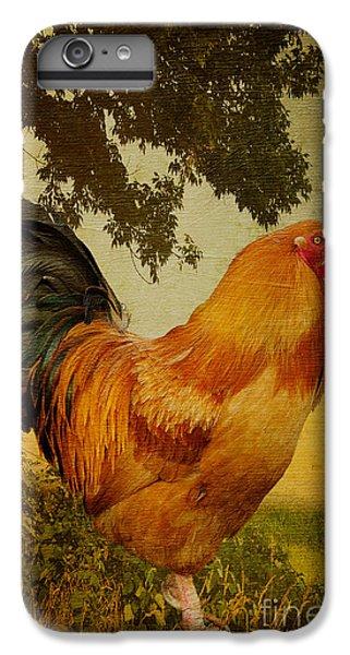 Chanticleer IPhone 6 Plus Case by Lois Bryan