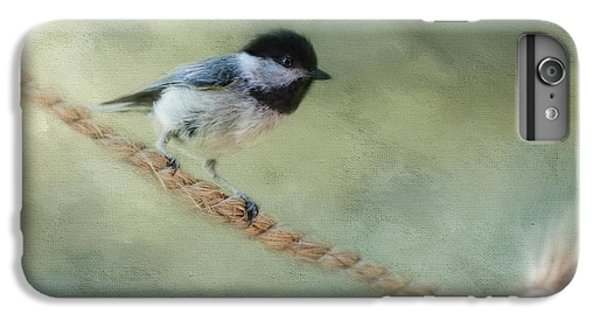 Chickadee At The Shore IPhone 6 Plus Case by Jai Johnson