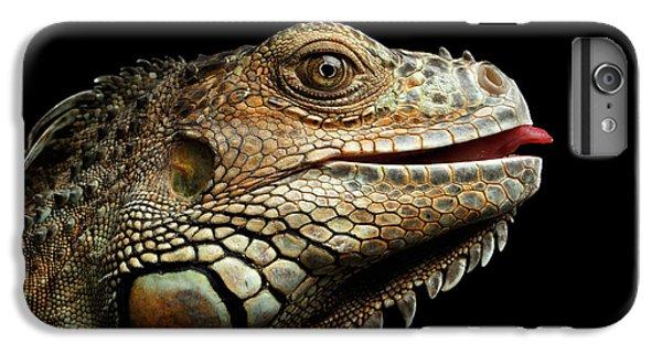 Close-upgreen Iguana Isolated On Black Background IPhone 6 Plus Case by Sergey Taran