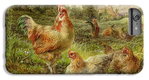 Cochin China Fowls IPhone 6 Plus Case by George Hickin
