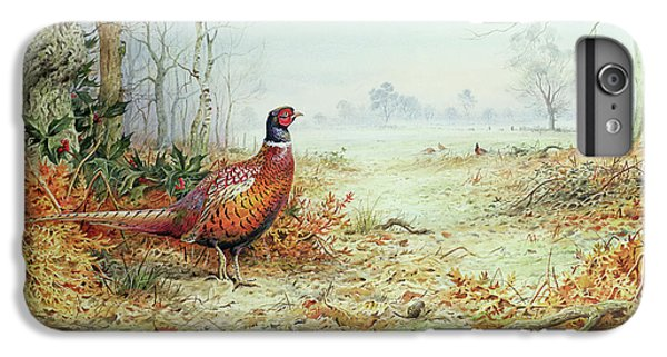 Cock Pheasant  IPhone 6 Plus Case by Carl Donner