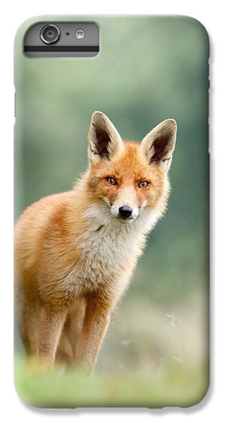 Curious Fox IPhone 6 Plus Case by Roeselien Raimond