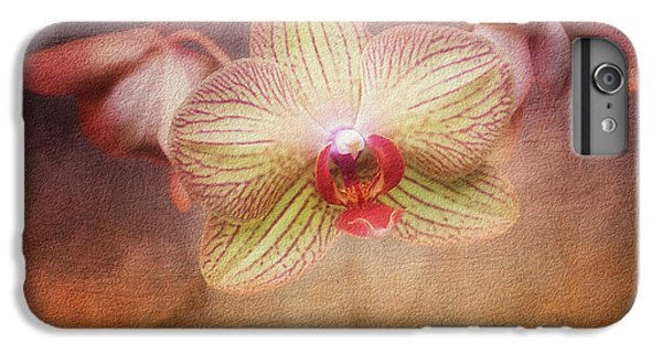 Cymbidium Orchid IPhone 6 Plus Case by Tom Mc Nemar