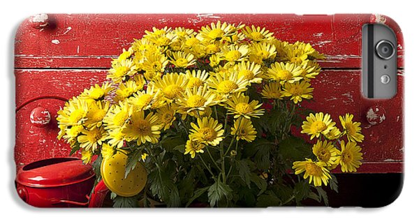 Daisy Plant In Drawers IPhone 6 Plus Case by Garry Gay
