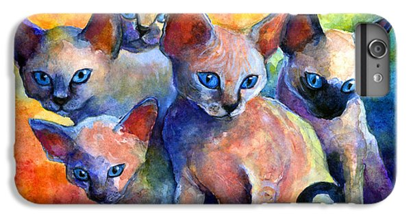 Devon Rex Kitten Cats IPhone 6 Plus Case by Svetlana Novikova