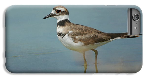 Elegant Wader IPhone 6 Plus Case by Fraida Gutovich