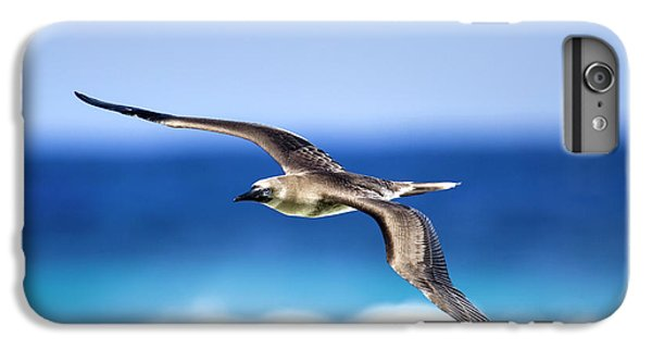 Eye Contact IPhone 6 Plus Case by Sean Davey