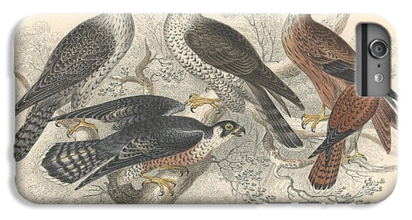 Falcons IPhone 6 Plus Case by Oliver Goldsmith
