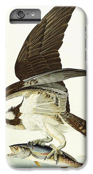 Fish Hawk IPhone 6 Plus Case by John James Audubon