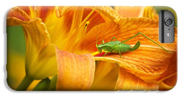 Flower With Company IPhone 6 Plus Case by Christina Rollo