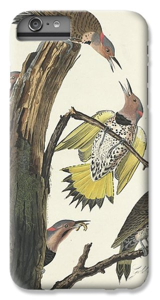 Gold-winged Woodpecker IPhone 6 Plus Case by John James Audubon