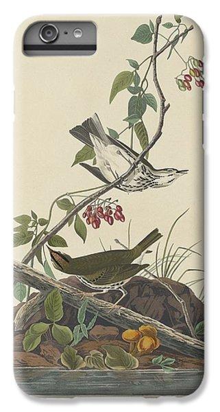 Golden-crowned Thrush IPhone 6 Plus Case by John James Audubon