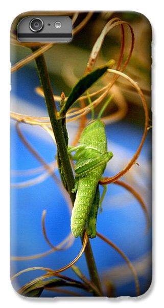 Grassy Hopper IPhone 6 Plus Case by Chris Brannen