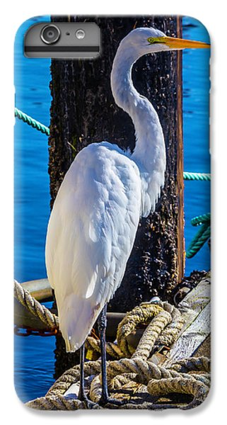 Great White Heron IPhone 6 Plus Case by Garry Gay