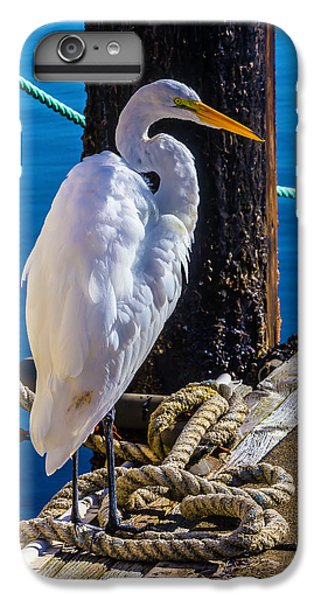 Great White Heron On Boat Dock IPhone 6 Plus Case by Garry Gay
