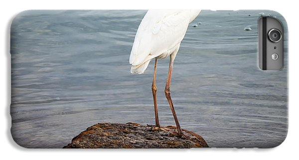 Great White Heron With Fish IPhone 6 Plus Case by Elena Elisseeva