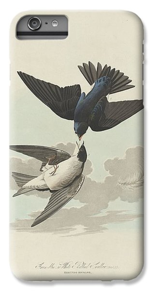 Green-blue Or White-bellied Swallow IPhone 6 Plus Case by John James Audubon