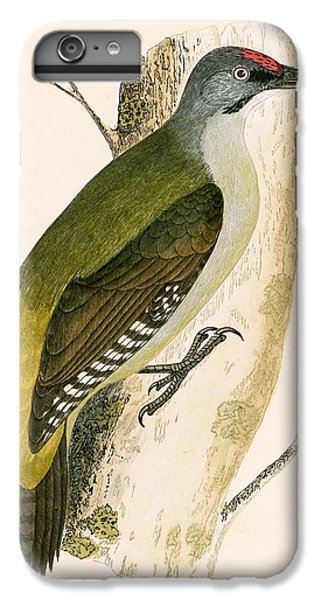 Grey Woodpecker IPhone 6 Plus Case by English School