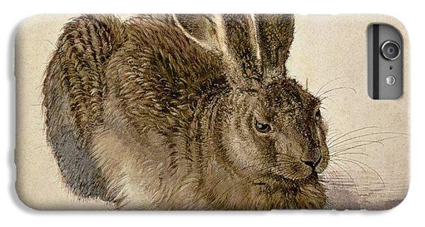 Hare IPhone 6 Plus Case by Albrecht Durer