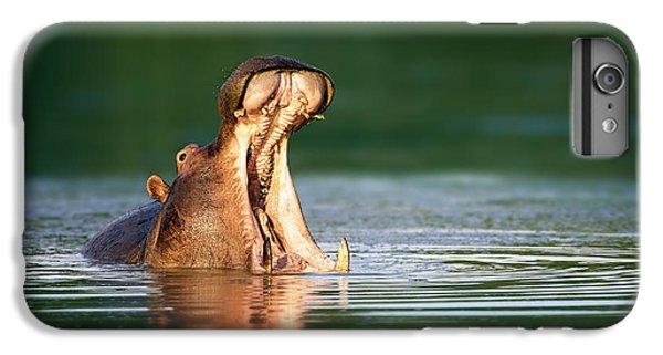Hippopotamus IPhone 6 Plus Case by Johan Swanepoel