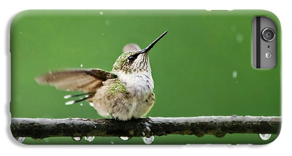 Hummingbird In The Rain IPhone 6 Plus Case by Christina Rollo