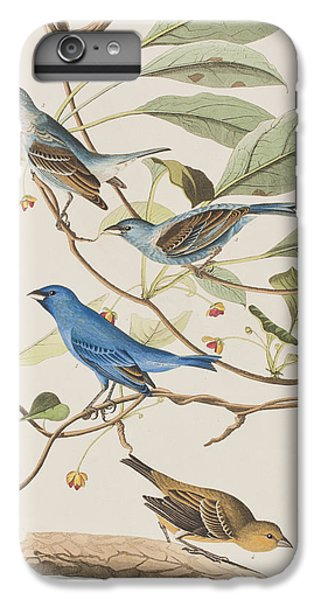 Indigo Bird IPhone 6 Plus Case by John James Audubon