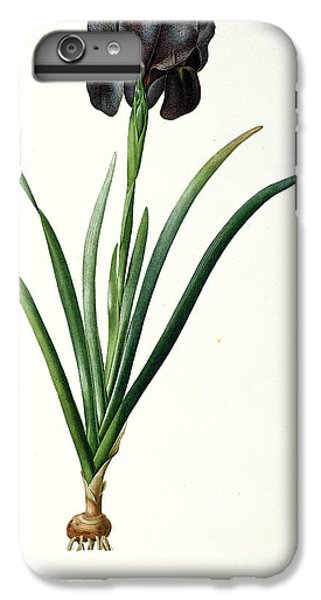 Iris Luxiana IPhone 6 Plus Case by Pierre Joseph  Redoute