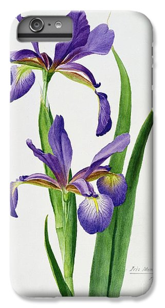 Iris Monspur IPhone 6 Plus Case by Anonymous