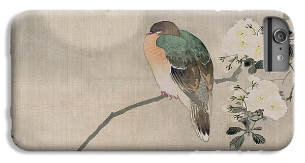 Japanese Silk Painting Of A Wood Pigeon IPhone 6 Plus Case by Japanese School