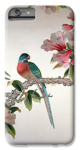 Jay On A Flowering Branch IPhone 6 Plus Case by Chinese School