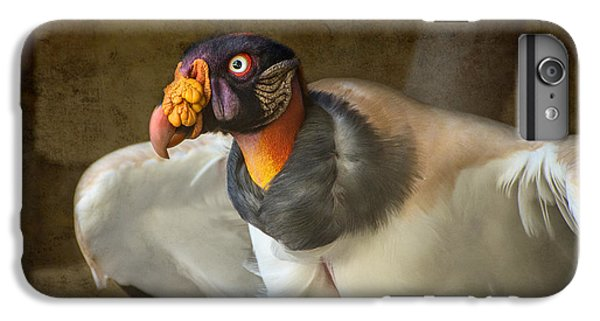 King Vulture IPhone 6 Plus Case by Jamie Pham