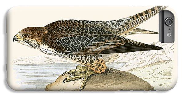 Lanner Falcon IPhone 6 Plus Case by English School