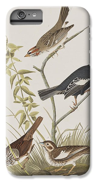 Lark Finch Prairie Finch Brown Song Sparrow IPhone 6 Plus Case by John James Audubon