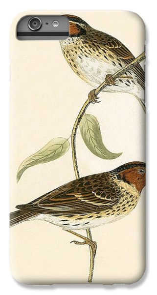Little Bunting IPhone 6 Plus Case by English School
