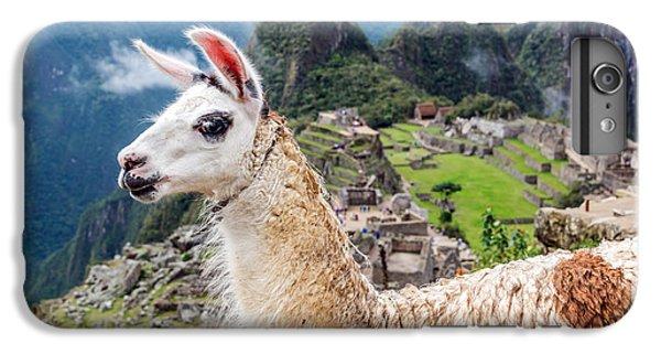 Llama At Machu Picchu IPhone 6 Plus Case by Jess Kraft