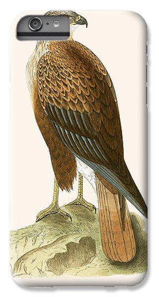 Long Legged Buzzard IPhone 6 Plus Case by English School