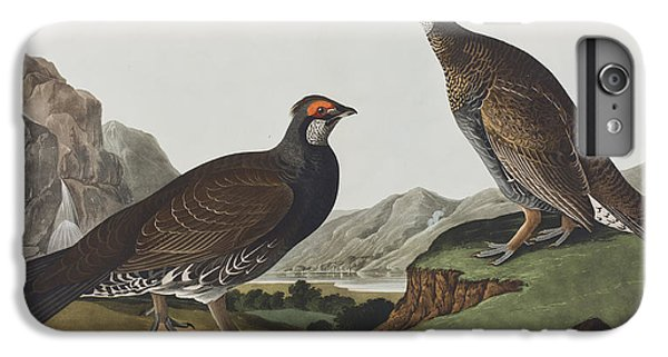 Long-tailed Or Dusky Grous IPhone 6 Plus Case by John James Audubon