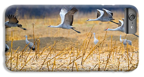 Low Level Flyby IPhone 6 Plus Case by Mike Dawson