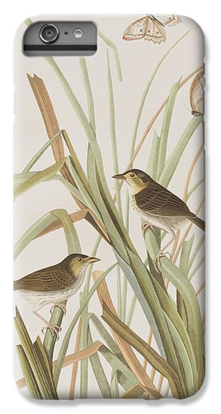 Macgillivray's Finch  IPhone 6 Plus Case by John James Audubon