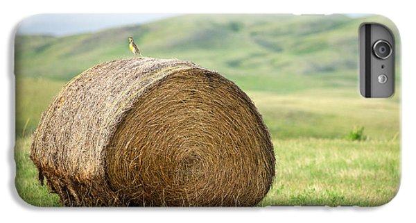 Meadowlark Heaven IPhone 6 Plus Case by Todd Klassy